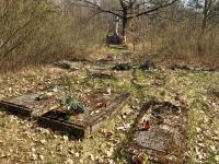 Cmentarz ewangelicko-augsburski i reformowany w Kolonii Pożdżenice