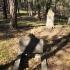 Cmentarz ewangelicko-augsburski w Annopolach Starych
