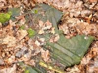 Cmentarz ewangelicko-augsburski w Antoniewie