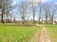 Cmentarz ewangelicko-augsburski w Bełchatowie