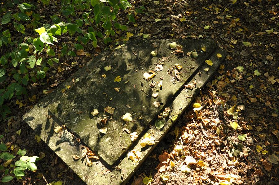 Cmentarz ewangelicko-augsburski w Borowej