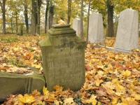 Cmentarz ewangelicko-augsburski w Bukowcu
