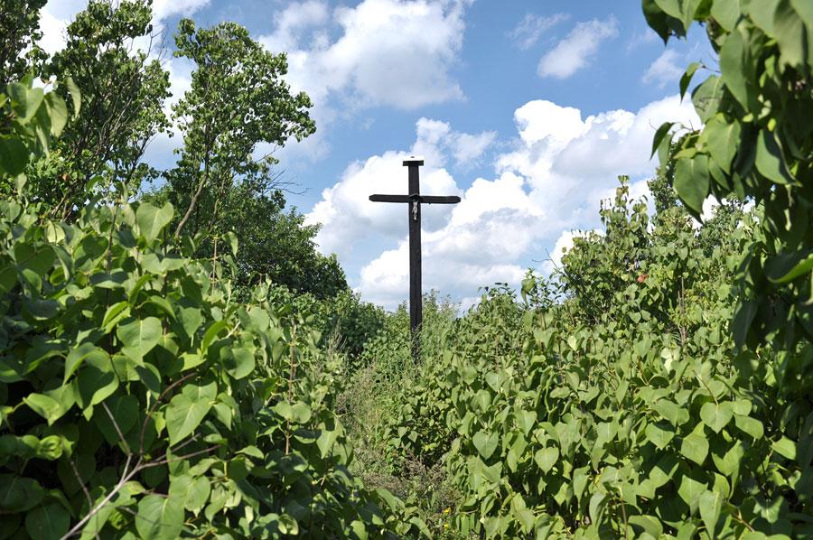 Cmentarz ewangelicko-augsburski w Chorzepinie