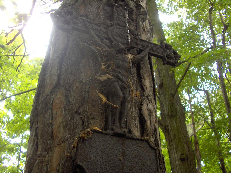 Cmentarz ewangelicko-augsburski w Czyżeminku