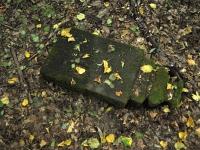 Cmentarz ewangelicko-augsburski w Danielowie
