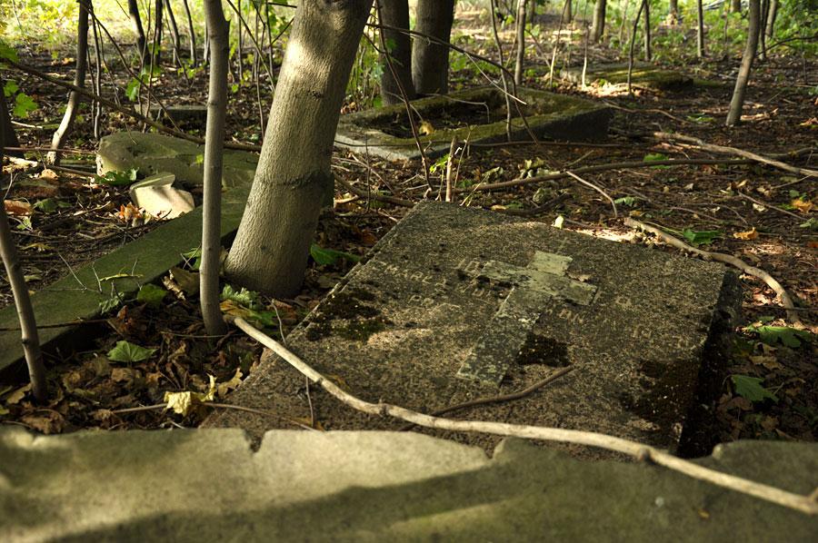 Cmentarz ewangelicko-augsburski w Felicjanowie