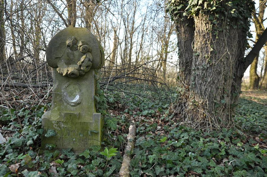 Cmentarz ewangelicko-augsburski w Kamocinie