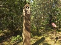 Cmentarz ewangelicko-augsburski w Klementynowie