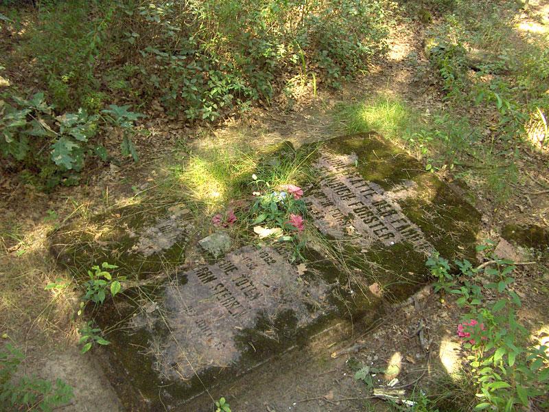 Cmentarz ewangelicko-augsburski w Kontrewersie
