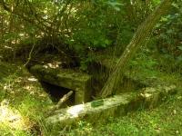 Cmentarz ewangelicko-augsburski w Krzemieniewie