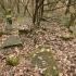 Cmentarz ewangelicko-augsburski w Lesie Pobłociszewskich