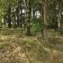 Cmentarz ewangelicko-augsburski w Nowych Błogich