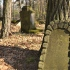 Cmentarz ewangelicko-augsburski w Pawłowej