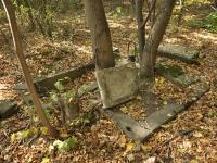 Cmentarz ewangelicko-augsburski w Przanowicach