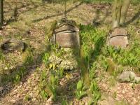 Cmentarz ewangelicko-augsburski w Ręszewie