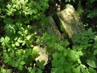 Cmentarz ewangelicko-augsburski w Rochowie