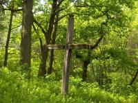 Cmentarz ewangelicko-augsburski w Rosanowie
