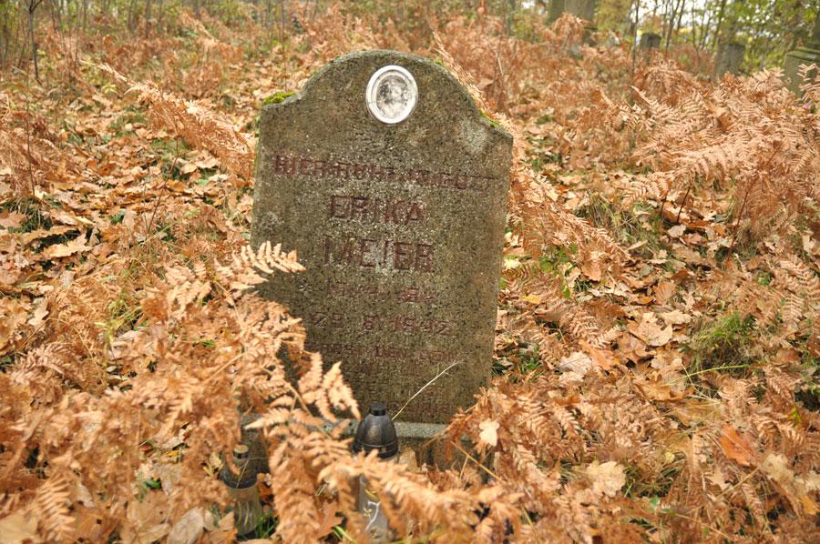 Cmentarz ewangelicko-augsburski w Rydzynach