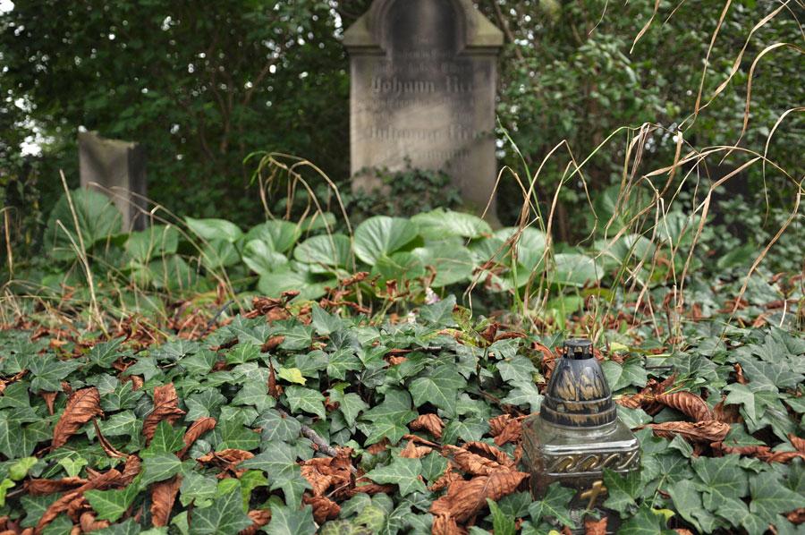 Cmentarz ewangelicko-augsburski w Swędowie