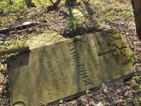 Cmentarz ewangelicko-augsburski w Truszczanku