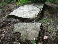 Cmentarz ewangelicko-augsburski w Wilczycy