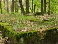Cmentarz ewangelicko-augsburski w Wyknie