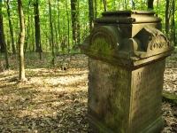 Cmentarz ewangelicko-augsburski w Żabieńcu