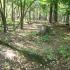 Cmentarz ewangelicko-augsburski w Zofiówce