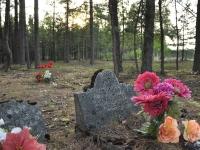 Cmentarz ewangelicko-reformowany w Faustynowie